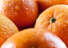 Oranges close up Royalty Free Stock Photo