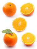 Oranges collection. Isolated on white background Royalty Free Stock Images