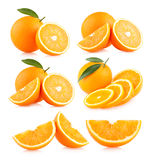 Oranges. Collection of 6 orange images royalty free stock photos