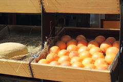 Oranges on the counter Stock Photography