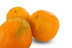 Oranges coupées en tranches mûres juteuses fraîches sur le fond blanc Photo libre de droits