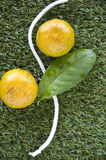 Oranges with curve line on grass. Oranges with curve line on green grass stock image