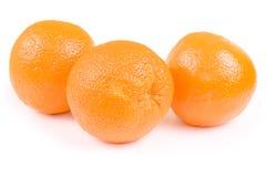 Oranges d'isolement Photo libre de droits