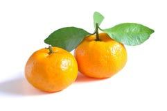 Oranges dans d'isolement Photographie stock