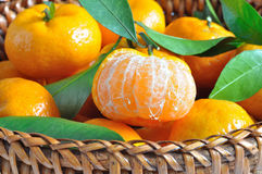 Oranges dans le panier Photo stock