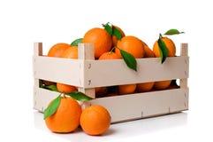 oranges de caisse Photographie stock libre de droits