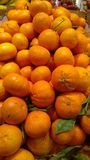 Oranges on display Stock Images