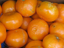 Oranges on display Stock Photos