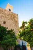 Oranges enrichies d'?glise et d'arbre photos stock