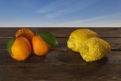 Oranges et cèdres images stock