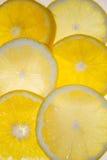 Oranges et citrons Image libre de droits