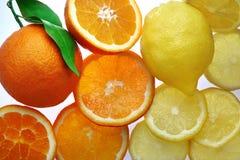 Oranges et citrons entiers et coupés en tranches Photographie stock