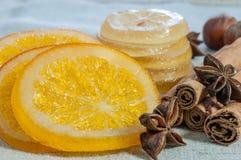 Oranges et citrons secs Photographie stock libre de droits
