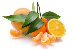Oranges et mandarine avec des tranches Photo stock