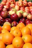 Oranges et pommes au soleil Photo libre de droits