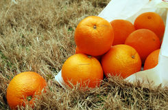 Oranges. Falling out of a white bag and on to dead grass royalty free stock photo