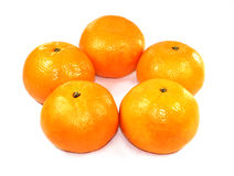 Oranges. Five oranges on isolated white background royalty free stock images