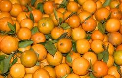 Oranges fraîches Photo libre de droits