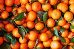 Oranges fraîches chinoises Photos libres de droits