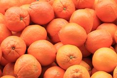 Oranges fruit background Royalty Free Stock Photo