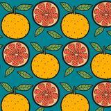 Oranges Fruit Pattern With Blue Background. Hand Drawn Vector Illustration Stock Photography