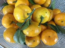 Oranges fruit sweet and sour in bucket Royalty Free Stock Photos