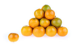 Oranges fruit tropical Stock Photography