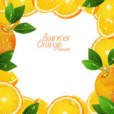 Oranges fruits with green leaves, slices and juice. Frame Stock Photos