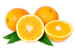 Oranges fruits isolated on white Stock Images