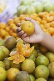 Oranges fruits at the market.  stock image