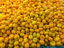 oranges fruits Royalty Free Stock Images