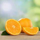 Oranges fruits in summer with copyspace Stock Image