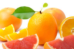 Oranges and grape-fruits Stock Photo