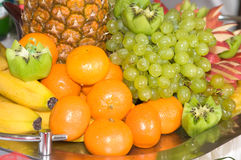 Oranges and grapes. Royalty Free Stock Image
