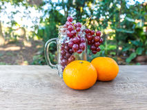 Oranges and grapes Stock Photos