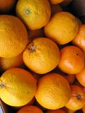 Oranges at the greengrocer Stock Images