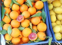Oranges at grocery shop - tarocco blood orange - sanguine orange. Fresh fruits royalty free stock photo