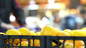 Oranges in the grocery store. Oranges in the supermarket, Oranges in a basket, HD 4K stock video footage