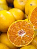 Oranges and half orange from Thailand (Vertical) Royalty Free Stock Image