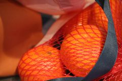 Oranges. Inside of a red net stock photography