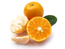 Oranges-Isolated 1 royalty free stock photography
