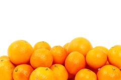 Oranges isolated many Royalty Free Stock Photo