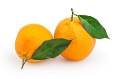 Oranges isolated on white Royalty Free Stock Photography