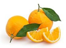 Oranges isolated on white Royalty Free Stock Photos
