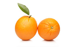 Oranges isolated on white background Stock Photos