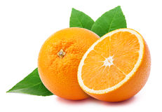 Oranges isolated on white Stock Photography