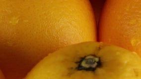 Oranges from juice. Bio restaurant stock footage