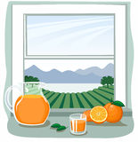 Oranges and juice in front of open window Stock Image