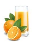 Oranges juice illustration Royalty Free Stock Photos
