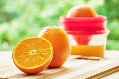 Oranges and juicer Royalty Free Stock Photos